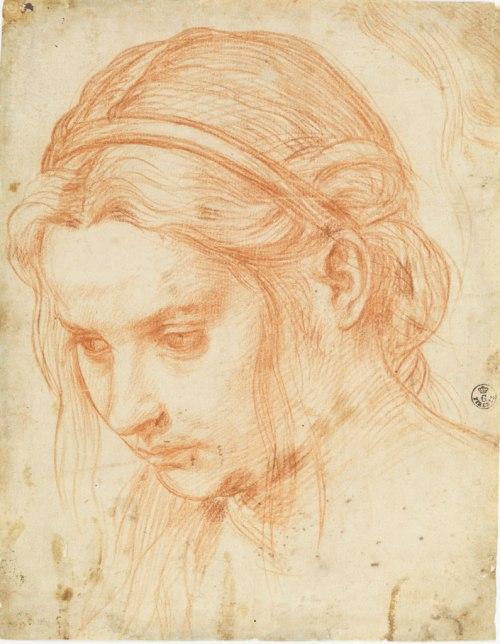 Study of the Head of a Young Woman, about 1523, Andrea del Sarto, red chalk. Gabinetto Disegni e Stampe, Gallerie degli Uffizi, Florence. Su concessione del Ministero dei beni e delle attività culturali e del turismo