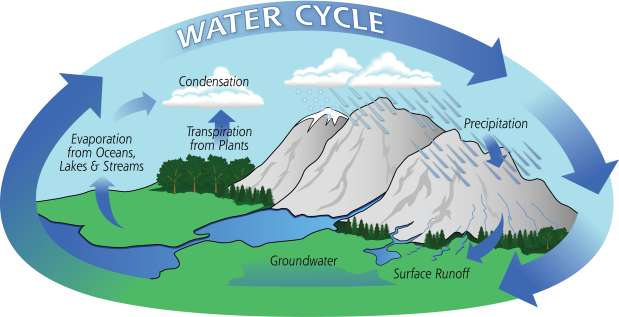 Fig 1. Water-Cycle-Art2A