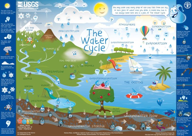 Fig 2. watercycle-kids-screen (1)